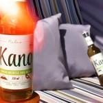 KANO – BIO-EISTEE – Produkttest – Getränk