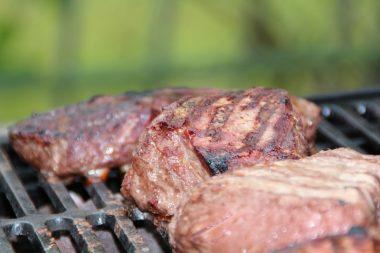 Mootral klimafreundliches Fleisch Foodtruck Tour 4