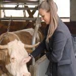 Mootral – klimafreundliche Kühe und kostenlose Burger