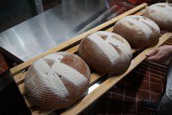Rischart Brot Produktionsbesichtigung Brotsorten - 40