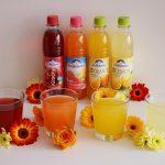 ADELHOLZENER Bio Limonaden & Erfrischungsgetränke im Test