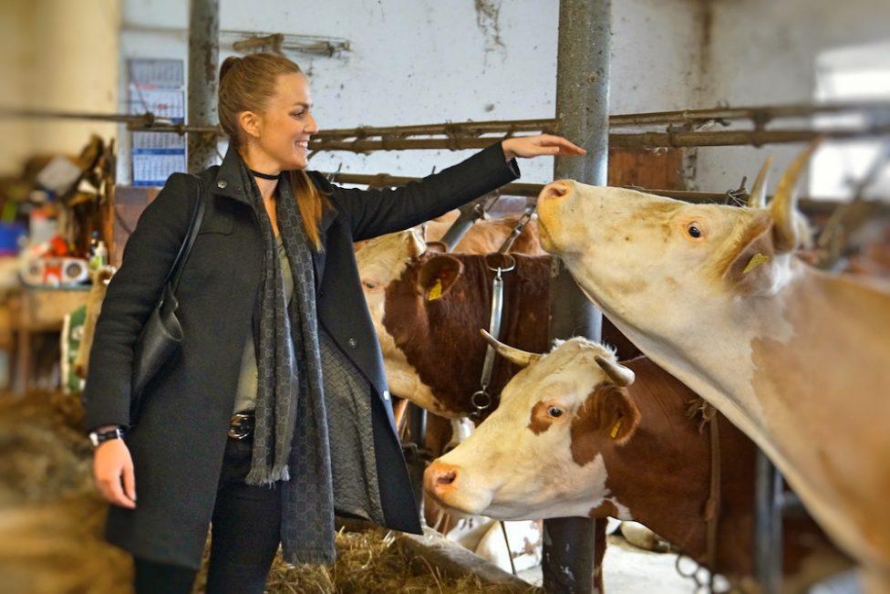 Andechser Bio-Molkerei Wir lassen die Kuh raus 3