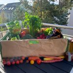 Individuelle Gemüseboxen zusammenstellen und liefern lassen