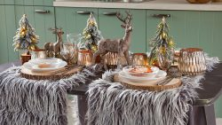 Gartencenter Seebauer Weihnachten einkaufen 11