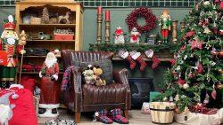 Gartencenter Seebauer Weihnachten einkaufen 13