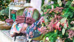 Gartencenter Seebauer Weihnachten einkaufen 4