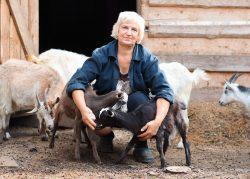 Marasia Ziegenmilcheis Muenchen kaufen 1