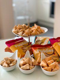 Paddies Snacks Protein Snacks Paddies - -07